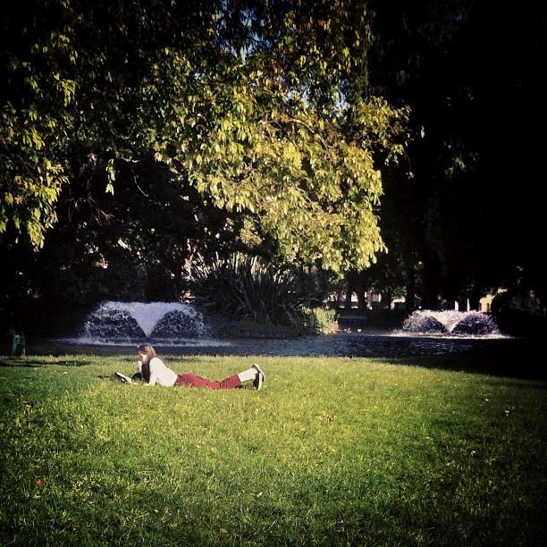 The Whale // Carlton Gardens // iP4